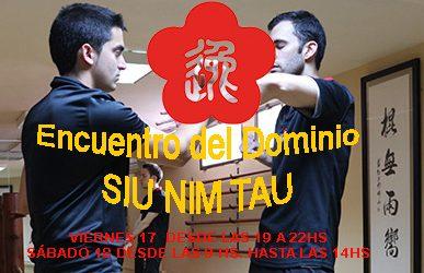 Encuentro del Domino Siu Nim Tau
