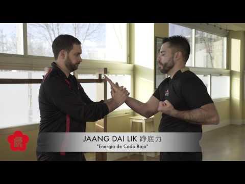 La estructura del brazo – Jaan Dai Lik