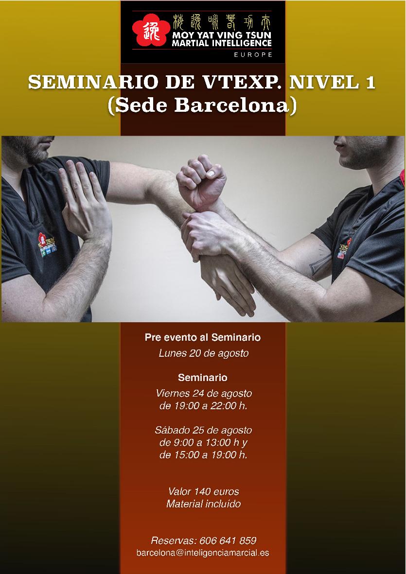 Seminario Ving Tsun Experience Nivel 1 en Barcelona